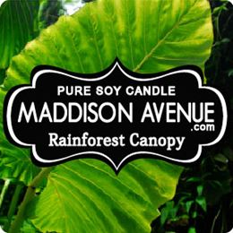 Rainforest Canopy by Maddison Avenue Candle Company