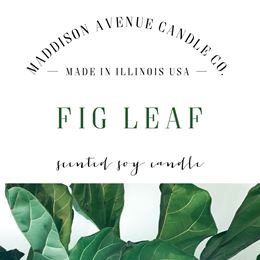 Fig Leaf by Maddison Avenue Candle Company