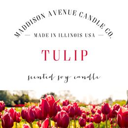 Tulip by Maddison Avenue Candle Company